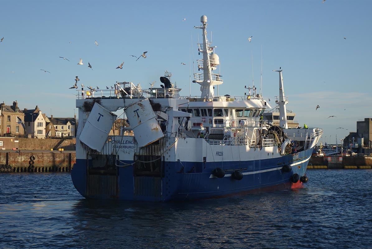 Winter mackerel fishery now underway